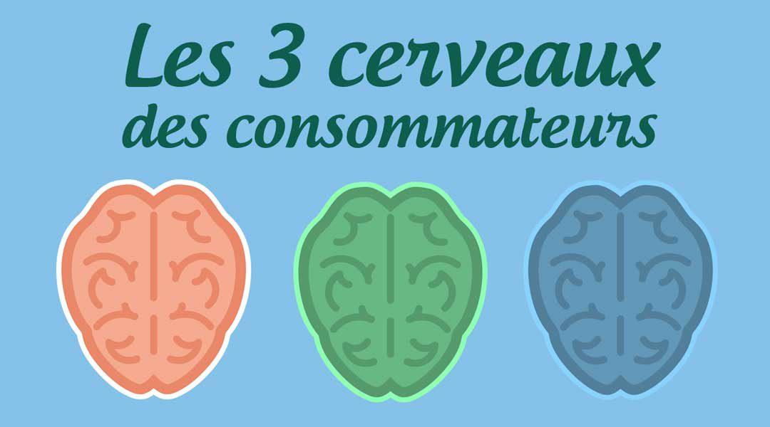 Les trois cerveaux des consommateurs