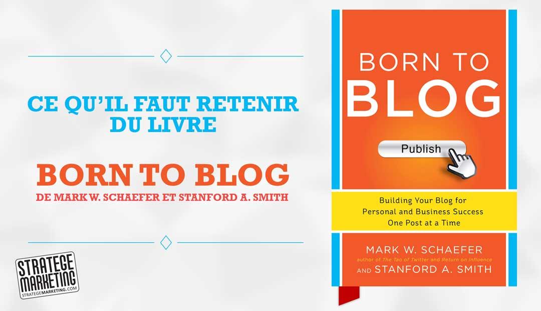 born to blog de mark schaefer et stanford smith ce qu il faut retenir du livre. Black Bedroom Furniture Sets. Home Design Ideas